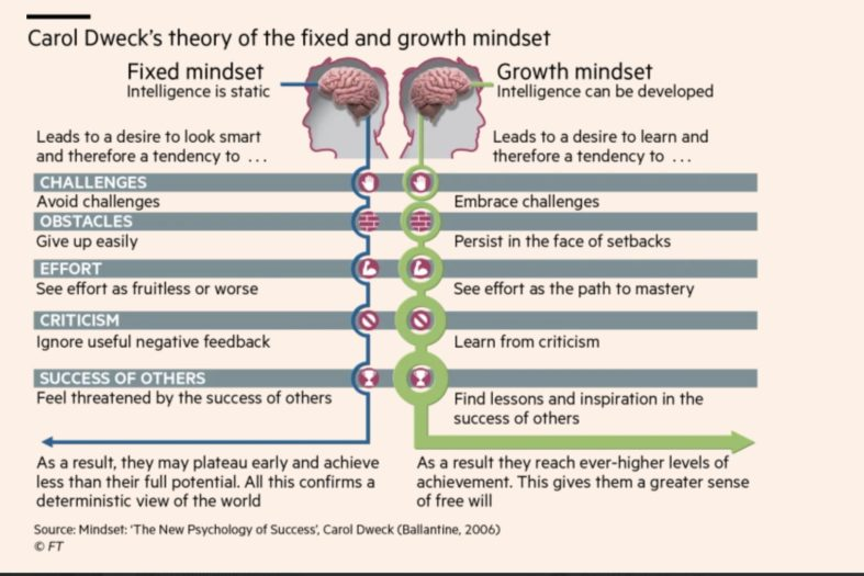 carol dweck theory of fixed and growth mindset