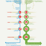 Are You Fixed or Growth Mindset? Here's a Simple Exercise To Find Out