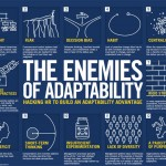 The 12 enemies of adaptability